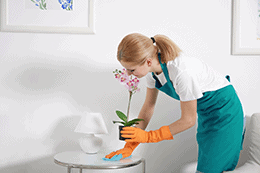 Maid Services & Housekeeping in Montreal